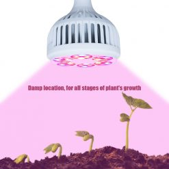 Bulb Grow_Lamp_for_Greenhouse_Organic_Hydroponics