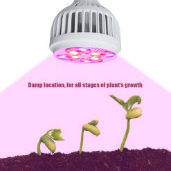 Grow_Lamp_for_Indoor_Plants